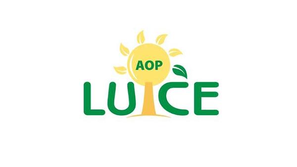 AOP LUCE