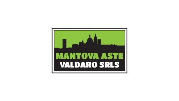 Mantova Aste Valdaro